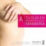 Guía Reconstruccion Mamaria - SECPRE